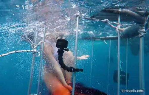 知名女 優海下拍攝 鯊魚突然沒有忍住 竟然造成這樣的後果
